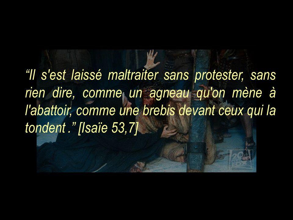 Il s est laissé maltraiter sans protester, sans rien dire, comme un agneau qu on mène à l abattoir, comme une brebis devant ceux qui la tondent.. [Isaïe 53,7]